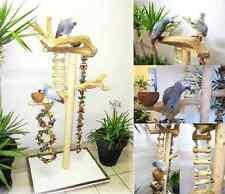 Freisitz, Papageienspielzeug, ORIGINAL Java Holz, Graupapageien/Amazonen, 165 cm
