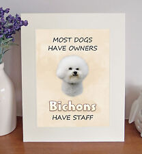 """Bichon Frise 10""""x8"""" Free Standing """"Bichons Have Staff"""" Picture Mount Fun Gift"""