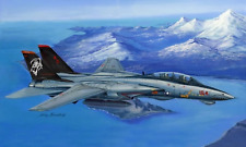 HobbyBoss 80368 Grumman F-14d Super Tomcat 1/48 Scale Plastic Model Kit