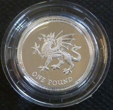 1995 Sterling Silver Proof One Pound £1 Royal Mint In Box Of Issue + COA