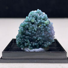 New ListingNatural Green Grape Agate Chalcedony Crystal Mineral Specimen Mini