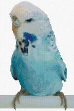 Australian Blue Budgie/Budgerigar/Parrot Cross Stitch DMC CHART ONLY 8x12, 14ct
