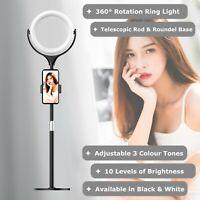 NEWAVE 6000K 3 Colour Dimmable Swivel 8'' LED Ring Light Phone Holder 40cm Stand