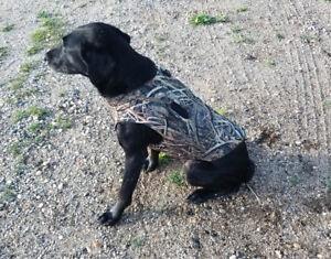 Mud River Deluxe Dog Vest