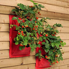 2 x 3 Pocket Burgon & Ball Strawberry Verti-Plant Vertical Garden Wall Planters