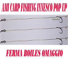 AMI LEGATI CARP FISHING N.2 TERMINALI FINALI PRONTI CARPFISHING BOILES BOILE AGO