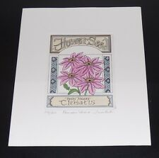 LINDA CULLEN CLEMATIS PACKET SIGNED LIMITED EDITION ETCHING FLOWERS SEED
