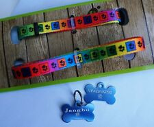 ROSEWOOD BRIGHT MULTI PAWS PUPPY SMALL DOG COLLAR & LEAD SET & ID TAG