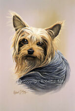 Yorkshire Terrier & Pup Print by Robert J. May