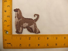 EMBROIDERED Beige Afghan Hound #1 Iron On / Sew On Patch / Badge approx 3""