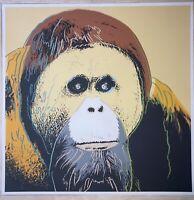 Andy Warhol - Orangutan - 96,4 x 96,4 cm - Certificata