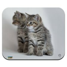 Domestic Shorthair Cats Mirror Image Low Profile Thin Mouse Pad Mousepad