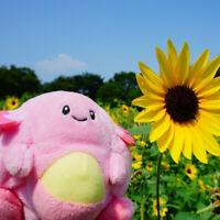 fit Chansey Plush Doll Stuffed Toy Pocket Monster 14cm Gift