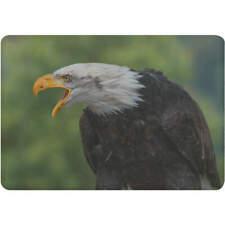 'Bald Eagle' Fridge Magnet (FM00008238)