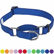 Blueberry Pet Safety Training Martingale Dog Collar, Royal Blue, Large, Heavy Du
