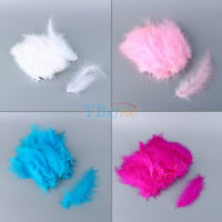 200Pcs Fluffy Marabou Feathers Card Making Embellishments In Choice Of Color