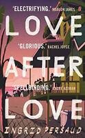 Love After Love: The most electrifying novel you will read all year by Persaud,