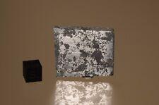 Landes 45.1 gram slice rare silicated Iron Grant County, West Virginia