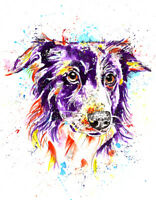 Border Collie Art Print Painting Artwork Picture Gifts,  - Size Mounting Options