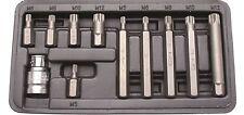 Innen Vielzahn Nüsse Steckschlüssel Satz Bits Werkzeug Vielzahnschlüssel XZN Set
