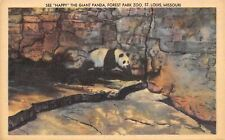 St Louis Missouri~See Happy The Giant Panda At Forest Park Zoo~1920 Postcard