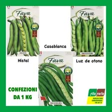 Vegetal-Anão Italiano borlotto Bean 60 Sementes-Lingua Di buttafuoco