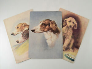 3 X ANTIQUE DOG POSTCARDS FROM THE SAME SERIES GREYHOUND AFGHAN HOUND BORZOI