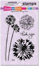 STAMPENDOUS Clear Stamps AGAPANTHUS THANKS Thank You Flowers Beautiful!