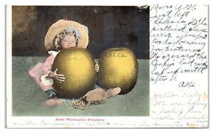 Early 1900s Some Washington Pumpkins Sweet Little Girl Postcard *5S2