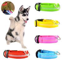 Luz LED Collar Mascota Perro Anti-perdida USB Recargable Intermitente Collar