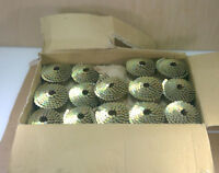 "Lot of 39 PRO FIT 1 1/4"" x .120 Galvanized Roofing Nail COILS - (6,200 Nails)"