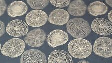 SAND DOLLAR NAVY BLUE AND WHITE GEOMETRIC COTTON WOVEN UPHOLSTERY  FABRIC
