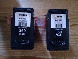 2 leere Original Druckerpatronen CANON  PG-560 Black * LEER