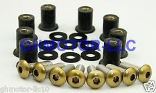 06 07 08 09 10 11 12 Concours FJR1300 HAYABUSA GOLD WINDSCREEN BOLTS SCREWS KIT