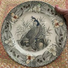 "Adams China, The Birds of America Canada Goose 10 1/2 Dinner Plate ""Perfect"""