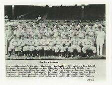 1946 NEW YORK YANKEES TEAM PICTURE with DiMaggio - 8 X 10 PHOTO