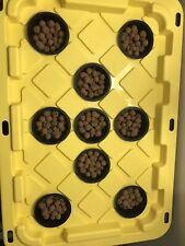 Hydroponic Aeroponic Growing System