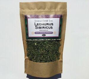 Siberian Motherwort Leonurus Sibericus Marihuanilla 50g fresh sprouts
