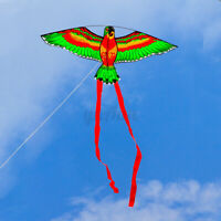 Parrot Kite with 100 Meters Line Funny Lovely Unique Kids Outdoor Toy for  !VD