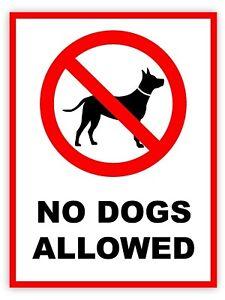 No Dogs Allowed Safety Sign Vinyl Waterproof Sticker