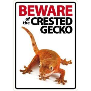 NOVELTY: BEWARE OF THE CRESTED GECKO  INTERNAL/EXTERNAL SIGN