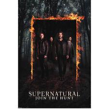 Supernatural - Burning Gate POSTER 61x91cm NEW * Dean Sam Castiel Crowley Hunt
