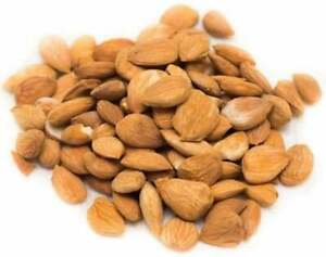 Raw Apricot Sweet Kernels Seeds Unsalted from Uzbekistan