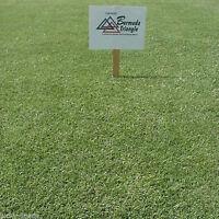 Pennington Triangle Bermuda Grass Seed - 1 Lb. (Covers 500 sq. ft.)