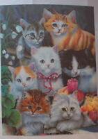 Kittens  - 3D Lenticular single image 39.5cm x 29.5cm unframed