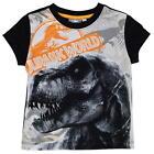 Garçons Enfants OFFICIEL jurassic world dinosaure t rex T-shirt manches courtes