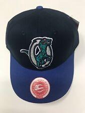 NEW Minor League Ogden Raptors Baseball Cap, YOUTH
