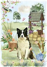 """Border Collie Dog (4""""x 6"""") Blank Card/Notelet """"Wishing Well"""" By Starprint"""
