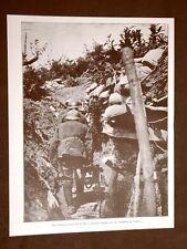 WW1 Prima guerra mondiale 1914-1918 Podgora nel 1916 Camminamenti e reticolati