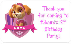 PERSONALISED BIRTHDAY PARTY BAG CONE FAVOUR ADDRESS STICKERS PAW PATROL SKYE